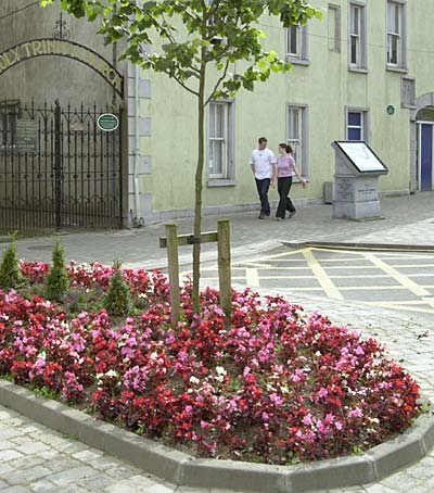Picture Flower Beds on Fethard News July 26th 2002
