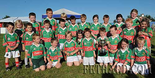 Mullinahone Under-8 football team, winners of the Under-8 football blitz at Fethard Community Field Day.