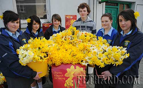 Transition Year students from Fethard Patrician Presentation Secondary School helping out with Daffodil Day in Fethard. L to R: Kelly Fogarty, Jane Kenny, Jean Anglim, Niall Rochford, Rebecca Fogarty and Fiona Crotty.