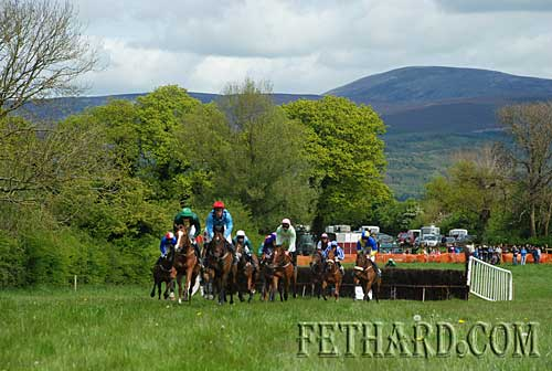 Tipperary Hunt Point to Point at Lisronagh