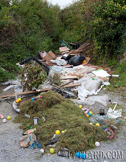 Indiscriminate dumping at the top of Strylea boreen in Fethard