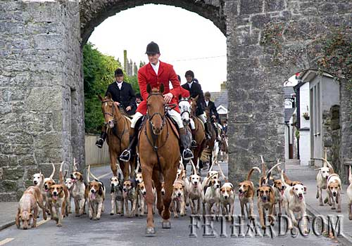 Tipperary Foxhounds making their way through Fethard's North Gate at the Opening Meet held on Bank Holiday Monday