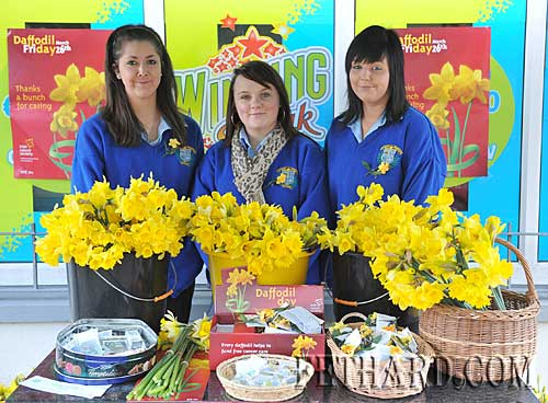 Students from Patrician Presentation Secondary School who helped with Daffodil Day in Fethard L to R : Maryanne Fogarty, Orla Lawrence and Stephanie Allen.