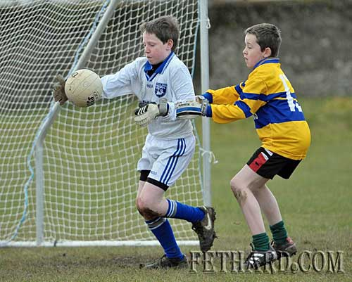 Jack Dolan, Fethard's goalkeeper, probably the most nerve racking position on a team.