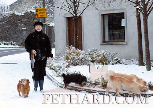 Philomena Morrissey taking her dogs for a walk in the snow last Sunday.
