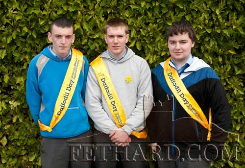 Pupils from Fethard Patrician Presentation Secondary School helping with Daffodil Day in Fethard L to R: Dillon Cahill; Ronan Fitzgerald and Dillon Maher
