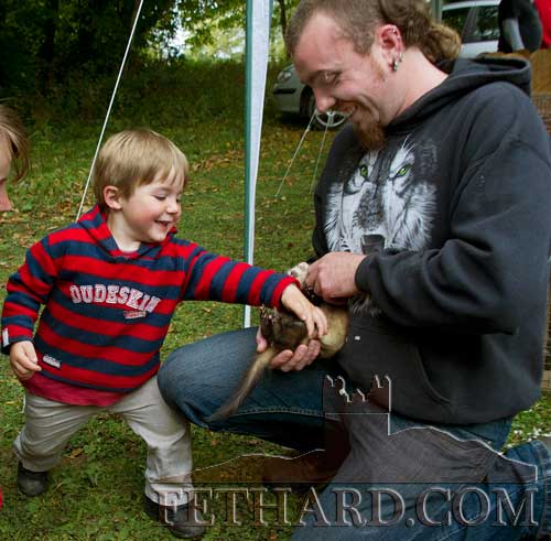 Thomas Murphy rubbing one of Peter Tynan's ferrets at the Annual Harvest Fete at Clonacody House