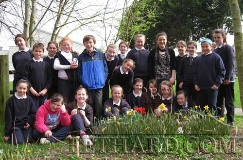 Students at Holy Trinity National School, Fethard, photographed while working on their Challenge to Change biodiversity project in the school garden with Denise O'Meara (Waterford Institute Technology)