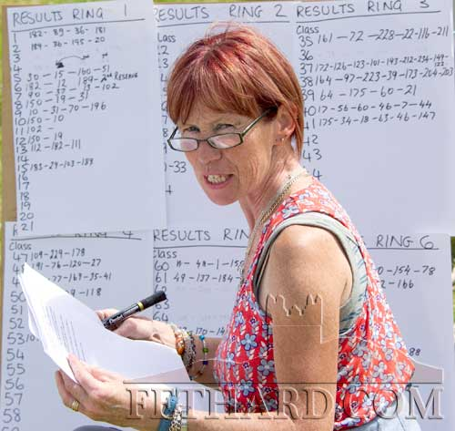Catherine Kearney posting results at the Killusty Pony Show