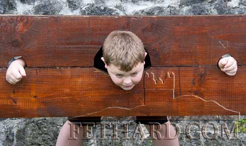 Eric Costin in the stocks at Fethard Medieval Festival