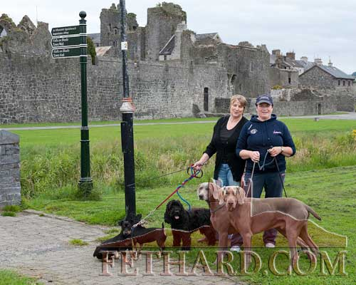 Josie Costello and Theresa Hurley taking their dogs for a walk by the riverside at Fethard Town Wall