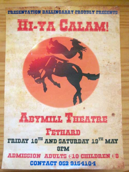 This year, the Transition Years in the Presentation Secondary Ballingarry are breaking with tradition.  Instead of holding the annual school show in the school hall, they will be performing their show in the fabulous Abymill Theatre, Fethard, on Friday 18th and Saturday 19th May 2012, at 8pm.