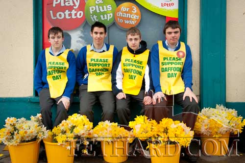Patrician Presentation Secondary School TY students helping out with this year's Daffodil Day outside Centra Supermarker. L to R: Adam Hall, John Paul Fitzgerald, Paul Norrby and James Maher.