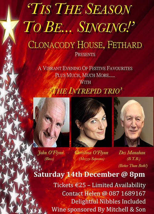 Christmas at Clonacody House Fethard