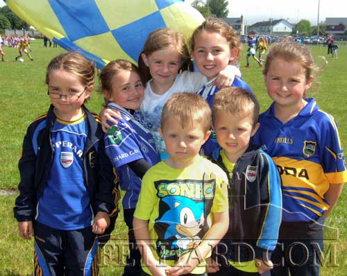 Fethard supporters at the Munster finals: RoisIn Geoghegan, Aine Connolly, Emily Spillane, Kaycie Ahern, Nicole Delaney with boys Lee Delaney and Troy Delaney