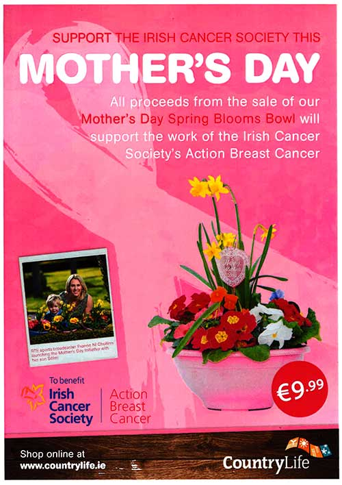 Mother's Day 'Spring Blooms Bowl' at Fethard Country Life