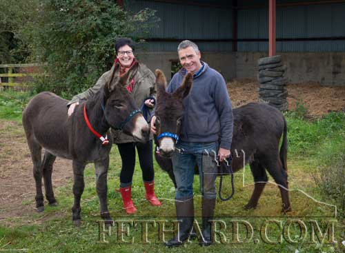 Mary and Philip Crean welcoming new arrivals 'Ralph' and 'Aden' to their new home in Moanbeg, Fethard, supplied from The Donkey Sanctuary, who help and improve conditions for donkeys and mules throughout Ireland.