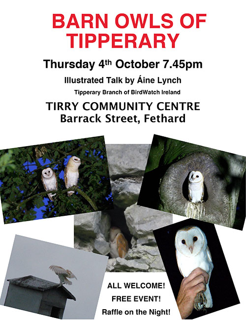 The Tipperary Branch of BirdWatch Ireland will be hosting an illustrated talk on the Barn Owls of Tipperary on Thur 4th October at 7.45, Tirry Community Centre, Barrack Street, Fethard. This is a free event suitable for all. There will be also a raffle on the night for a couple of framed pictures of Barn Owls.