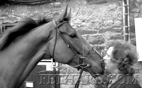 Mouse Morris whispering some encouragement to 'His Song' who was second favourite for Cheltenham Champion Hurdle 1989
