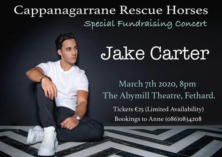 Jake Carter will do a once-off intimate concert in the Abymill Theatre, Fethard, on Saturday, March 7, starting at 8pm. The concert is run to raise funds for Cappanagarrane Horse Rescue. You are asked to please come along and support this deserving cause to help fund the rescue and rehabilitation of so many horses who would otherwise have no chance of survival. Cappanagarrane Horse Rescue is the only registered horse rescue service in Tipperary. Tickets are just €25 each and early booking is advised as tickets are limited. Booking now by contacting Anne at Tel: 086 0834208.