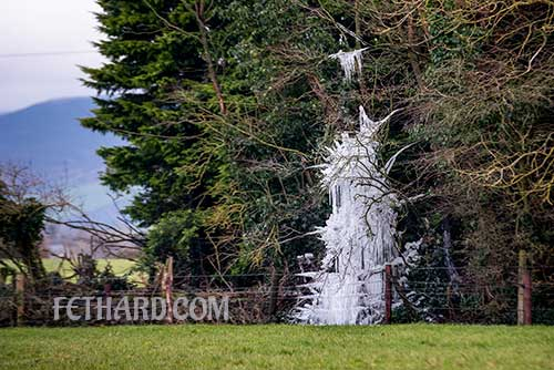 This piece of 'Jack Frost' magic art was photographed by Larry Kenny while on a walk in Fethard on Sunday. It highlights the beauty of nature in all kinds of weather.  Stay Safe!